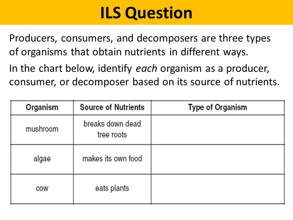 Producers, consumers, and decomposers are three types of organisms that obtain nutrients in different ways. In the chart below, identify each organism