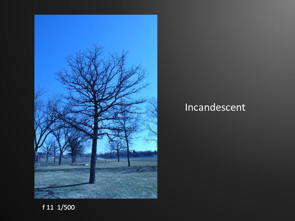Incandescent f 11 1/500