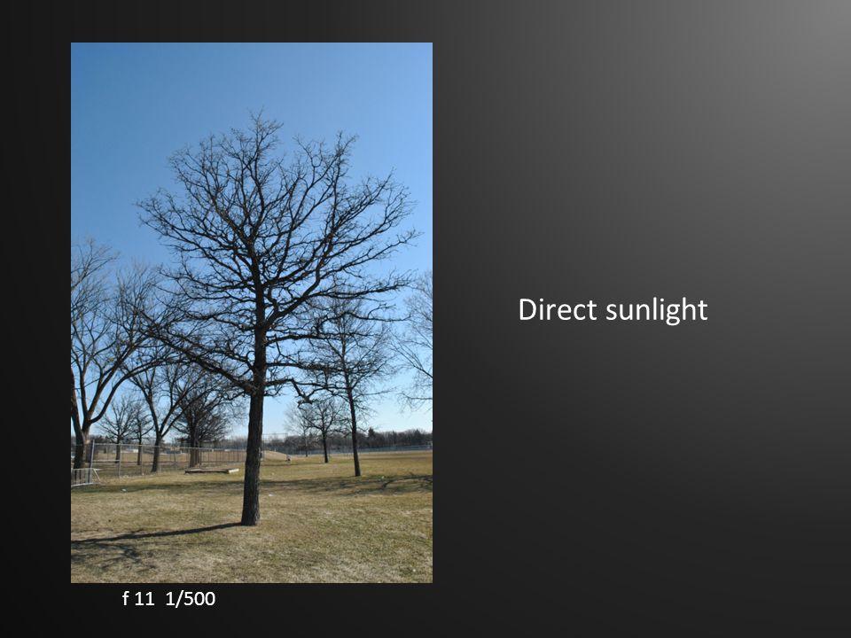 Direct sunlight f 11 1/500