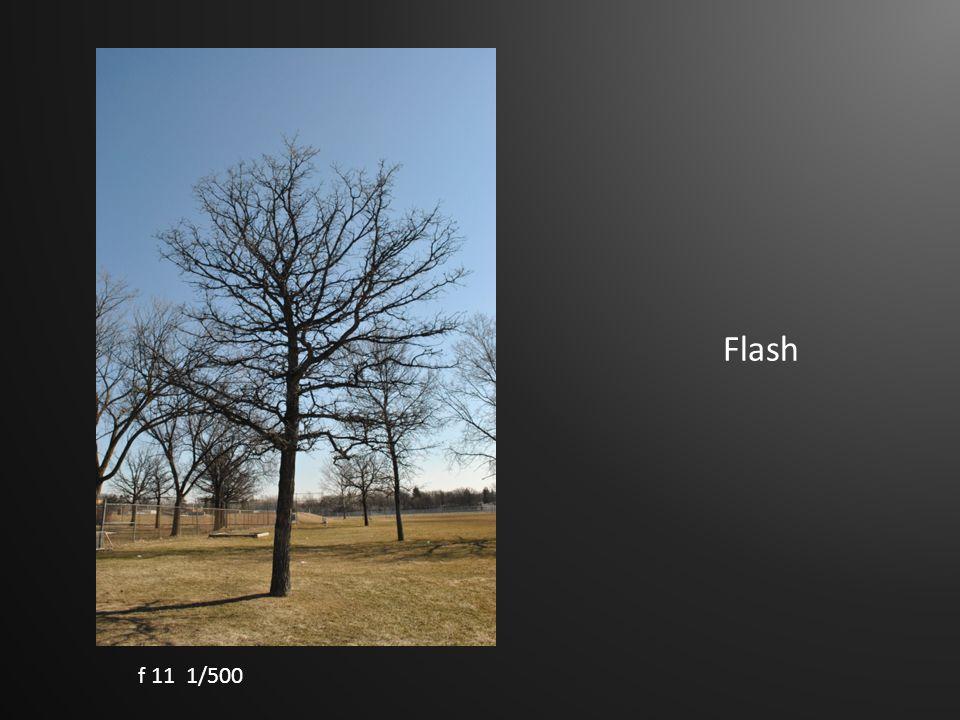 Flash f 11 1/500