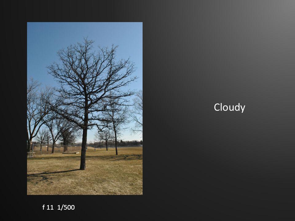 Cloudy f 11 1/500