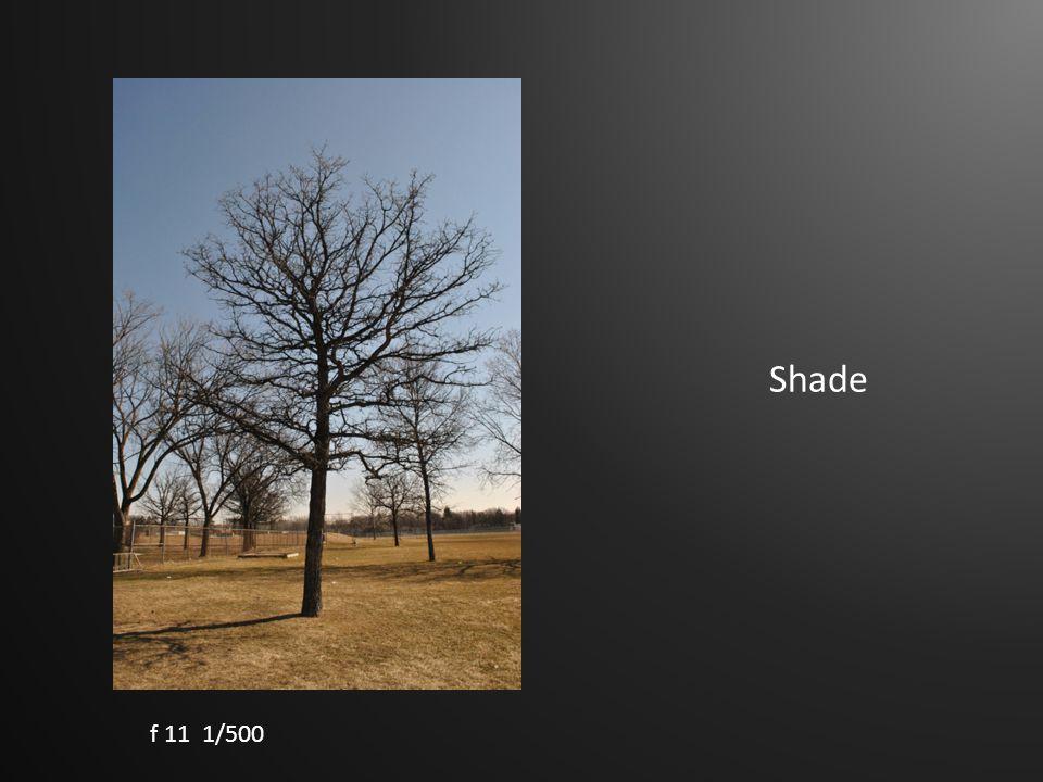 Shade f 11 1/500