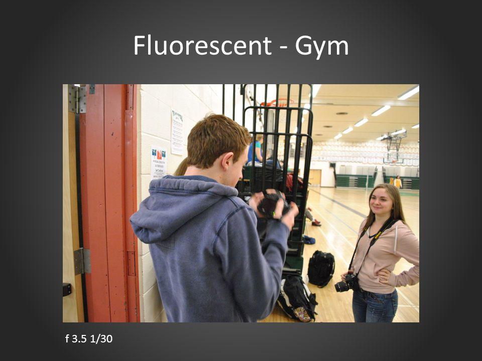 Fluorescent - Gym f 3.5 1/30