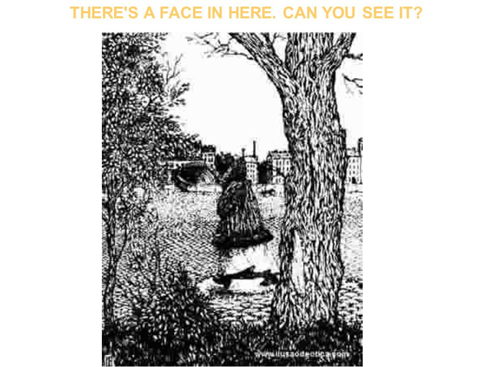 CAN YOU SEE 10 FACES IN THE TREE