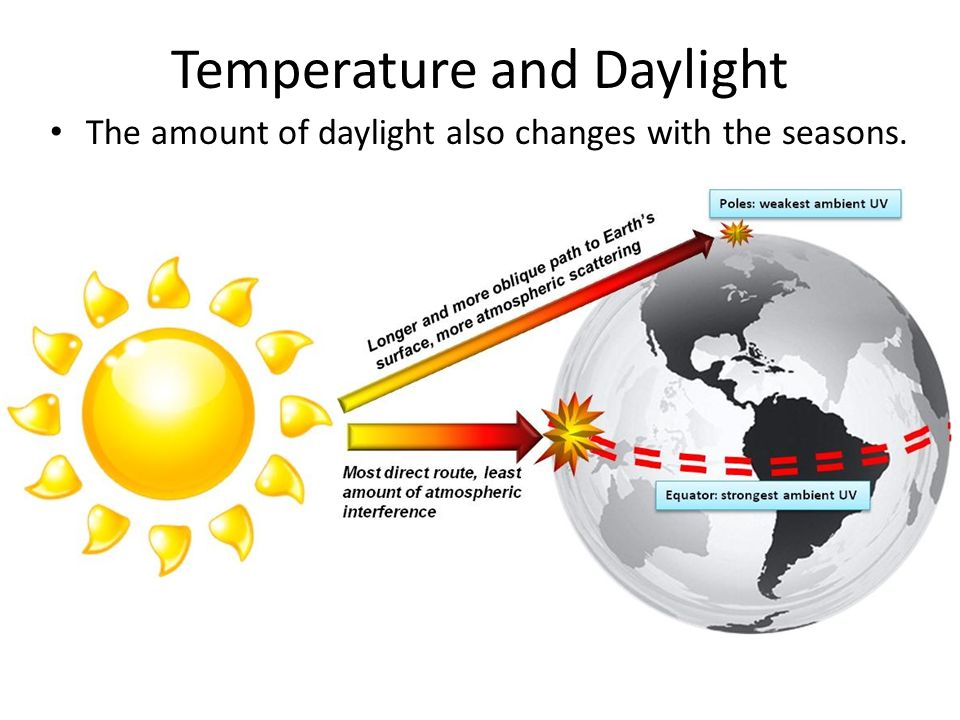 Temperature and Daylight The amount of daylight also changes with the seasons.