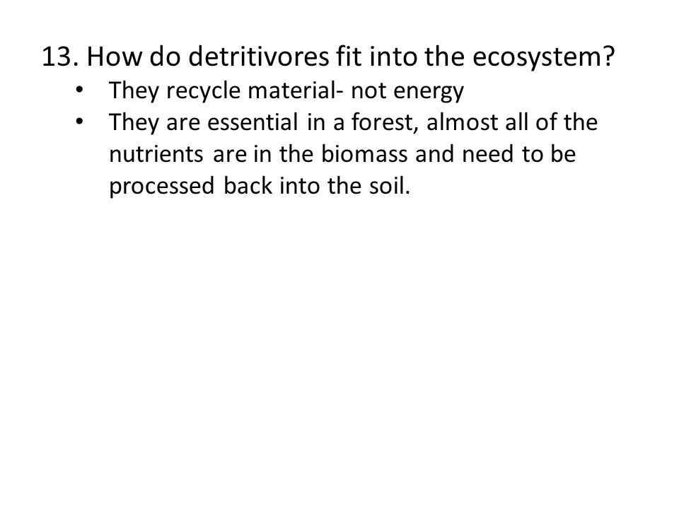 13. How do detritivores fit into the ecosystem? They recycle material- not energy They are essential in a forest, almost all of the nutrients are in t