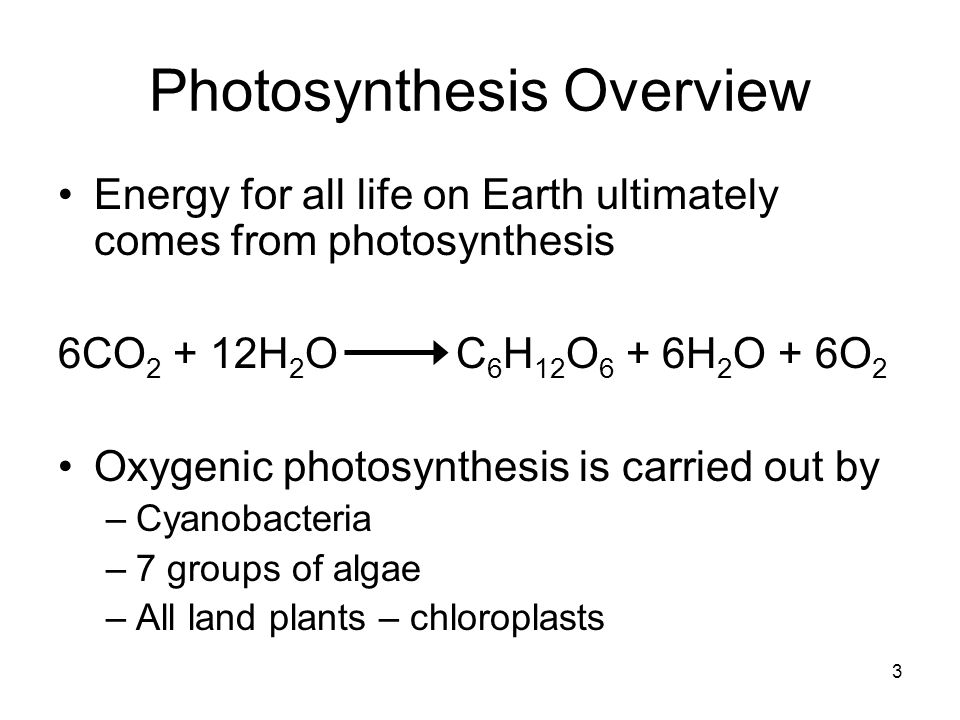 3 Photosynthesis Overview Energy for all life on Earth ultimately comes from photosynthesis 6CO 2 + 12H 2 O C 6 H 12 O 6 + 6H 2 O + 6O 2 Oxygenic phot