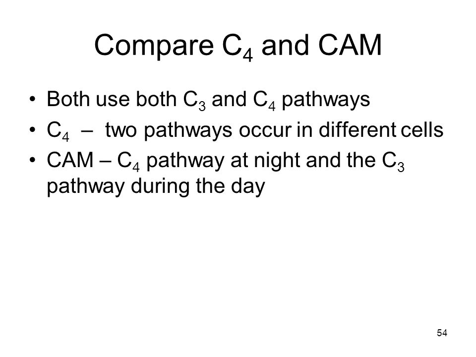 Compare C 4 and CAM Both use both C 3 and C 4 pathways C 4 – two pathways occur in different cells CAM – C 4 pathway at night and the C 3 pathway duri