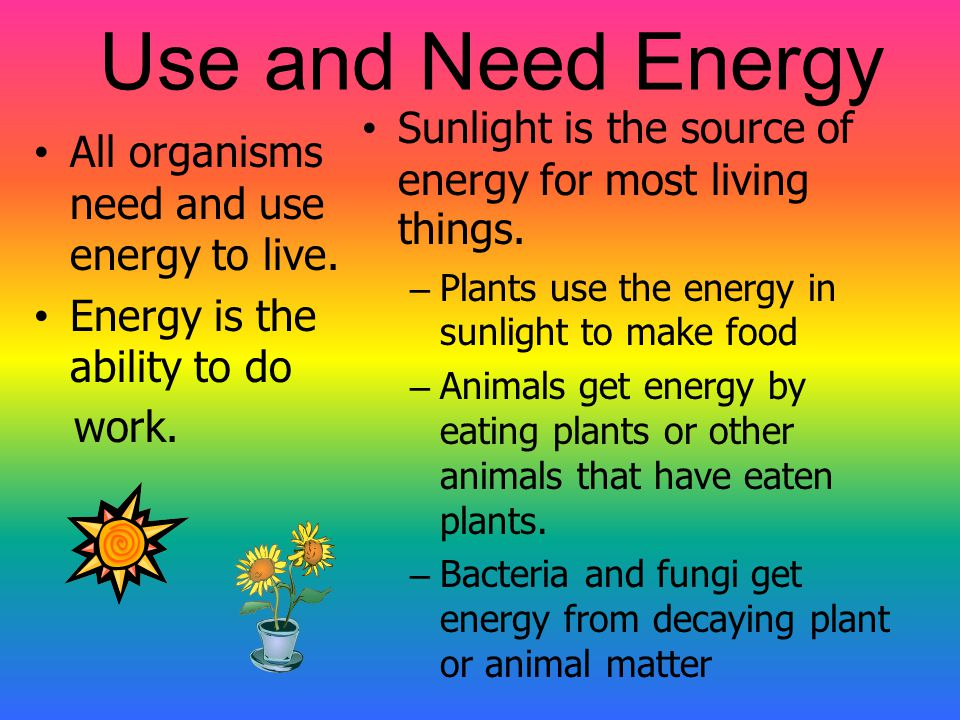 Why is R.O.G.E.R.S. a living thing? Living things take in and use energy……