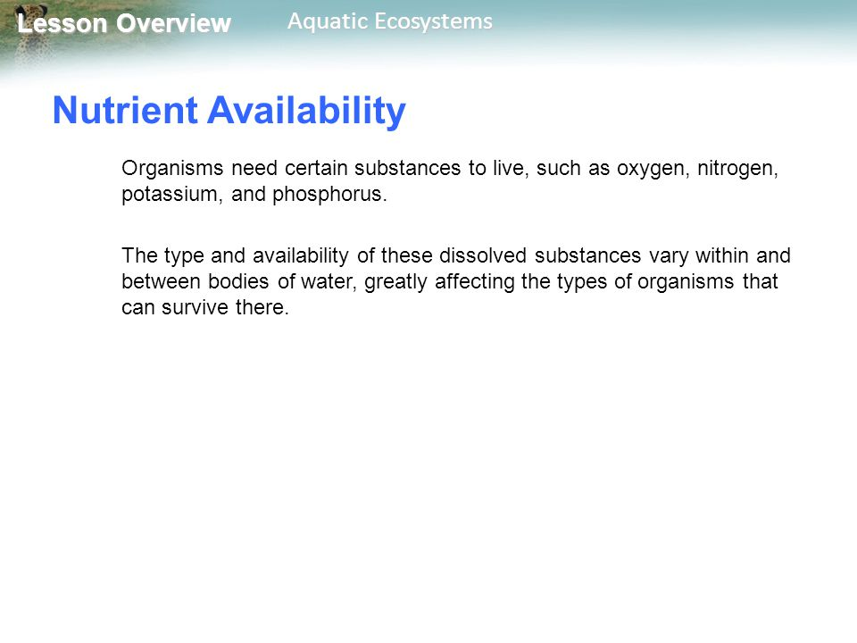 Lesson Overview Lesson Overview Aquatic Ecosystems Nutrient Availability Organisms need certain substances to live, such as oxygen, nitrogen, potassiu