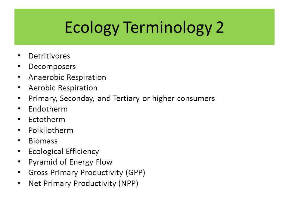 Ecology Terminology 2 Detritivores Decomposers Anaerobic Respiration Aerobic Respiration Primary, Seconday, and Tertiary or higher consumers Endotherm