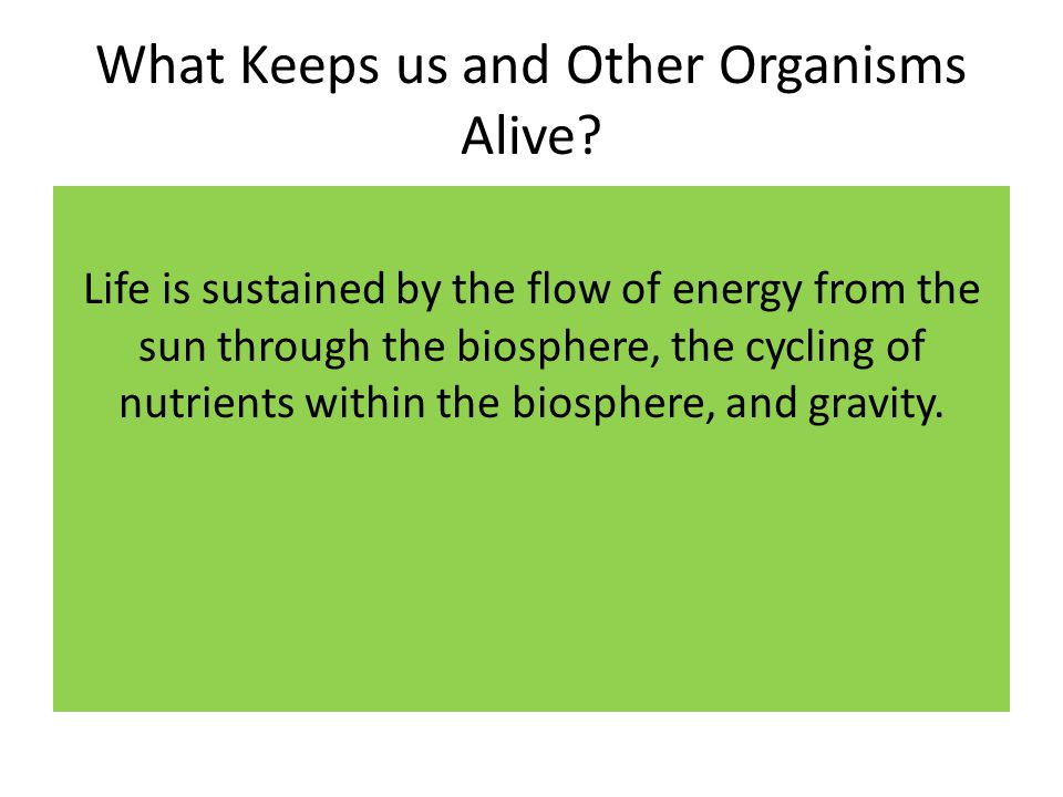 What Keeps us and Other Organisms Alive? Life is sustained by the flow of energy from the sun through the biosphere, the cycling of nutrients within t