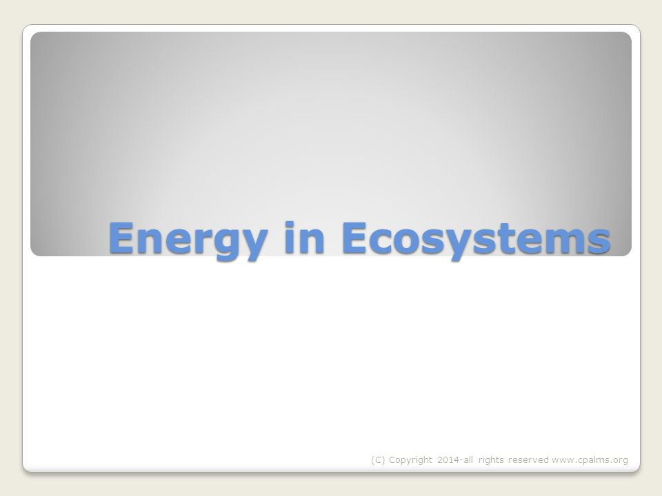 Energy in Ecosystems (C) Copyright 2014-all rights reserved www.cpalms.org
