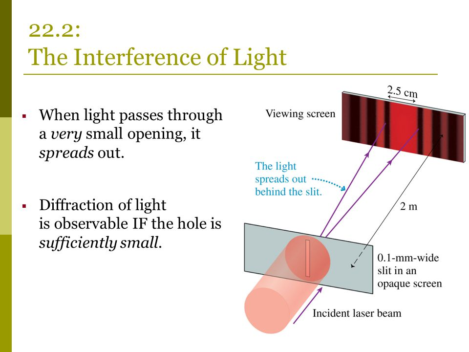 22.2: The Interference of Light  When light passes through a very small opening, it spreads out.  Diffraction of light is observable IF the hole is