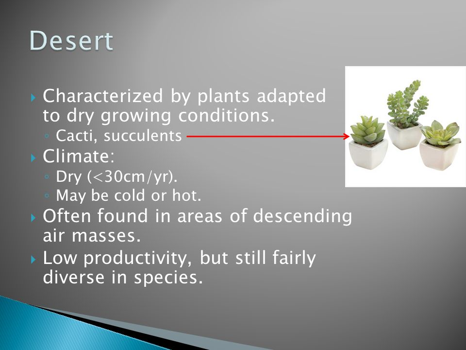  Characterized by plants adapted to dry growing conditions. ◦ Cacti, succulents  Climate: ◦ Dry (<30cm/yr). ◦ May be cold or hot.  Often found in a