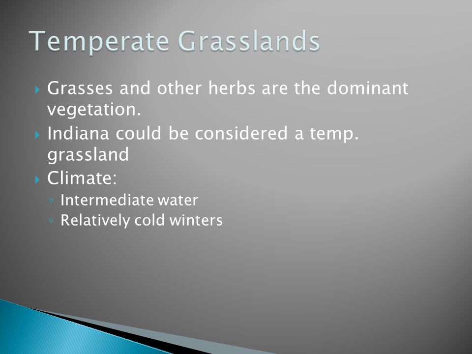  Grasses and other herbs are the dominant vegetation.  Indiana could be considered a temp. grassland  Climate: ◦ Intermediate water ◦ Relatively co