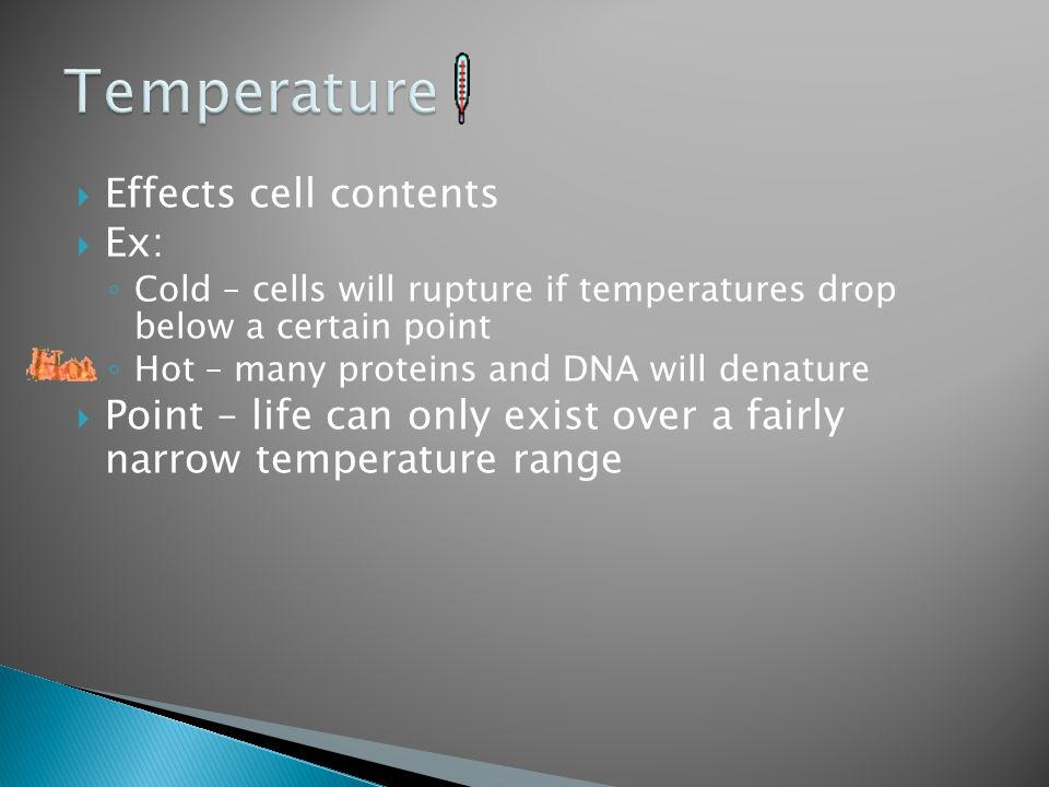  Effects cell contents  Ex: ◦ Cold – cells will rupture if temperatures drop below a certain point ◦ Hot – many proteins and DNA will denature  Poi