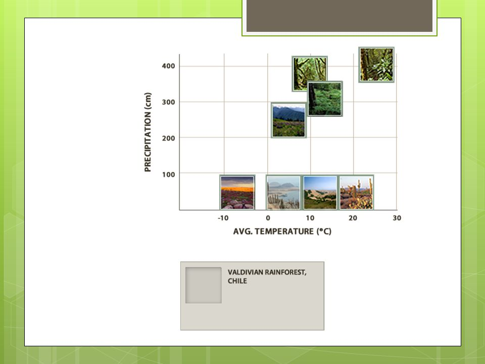 Whittaker Diagrams  The Whittaker Diagram suggests that the average temperature and precipitation of a particular location controls what type of vegetation may grow there.