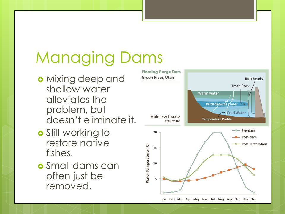Managing Dams  Mixing deep and shallow water alleviates the problem, but doesn't eliminate it.