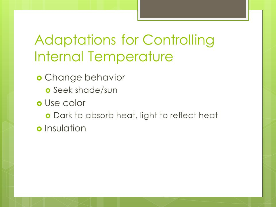 Adaptations for Controlling Internal Temperature  Change behavior  Seek shade/sun  Use color  Dark to absorb heat, light to reflect heat  Insulation