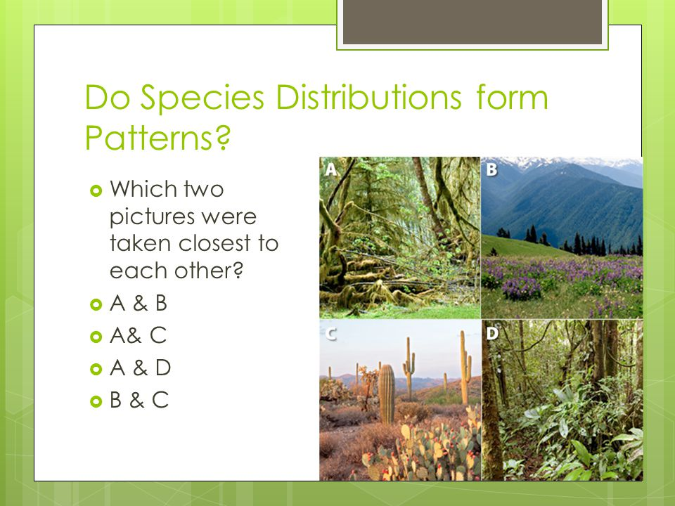 Do Species Distributions form Patterns.  Which two pictures were taken closest to each other.