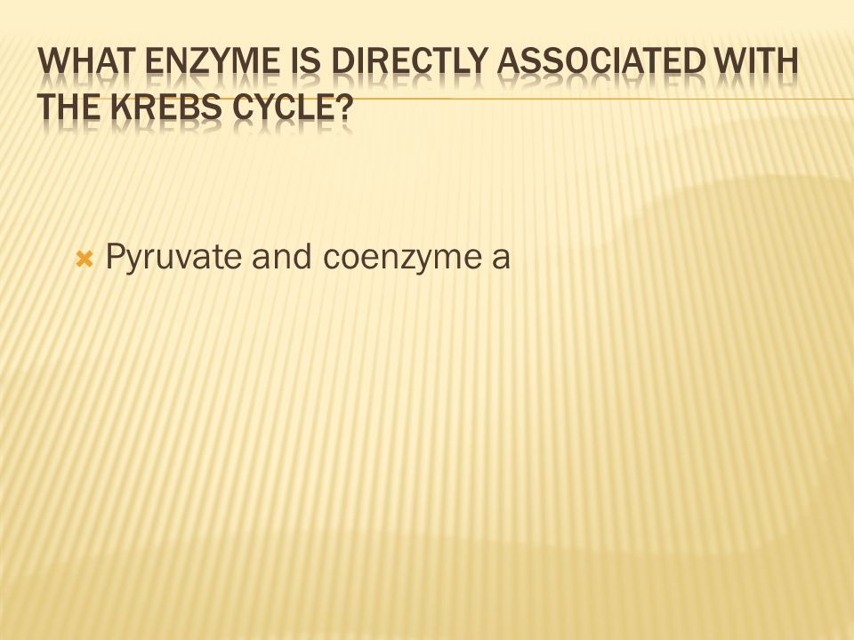  Pyruvate and coenzyme a