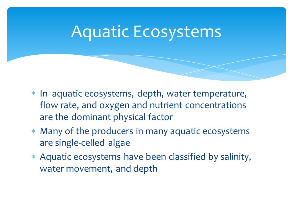  In aquatic ecosystems, depth, water temperature, flow rate, and oxygen and nutrient concentrations are the dominant physical factor  Many of the pr