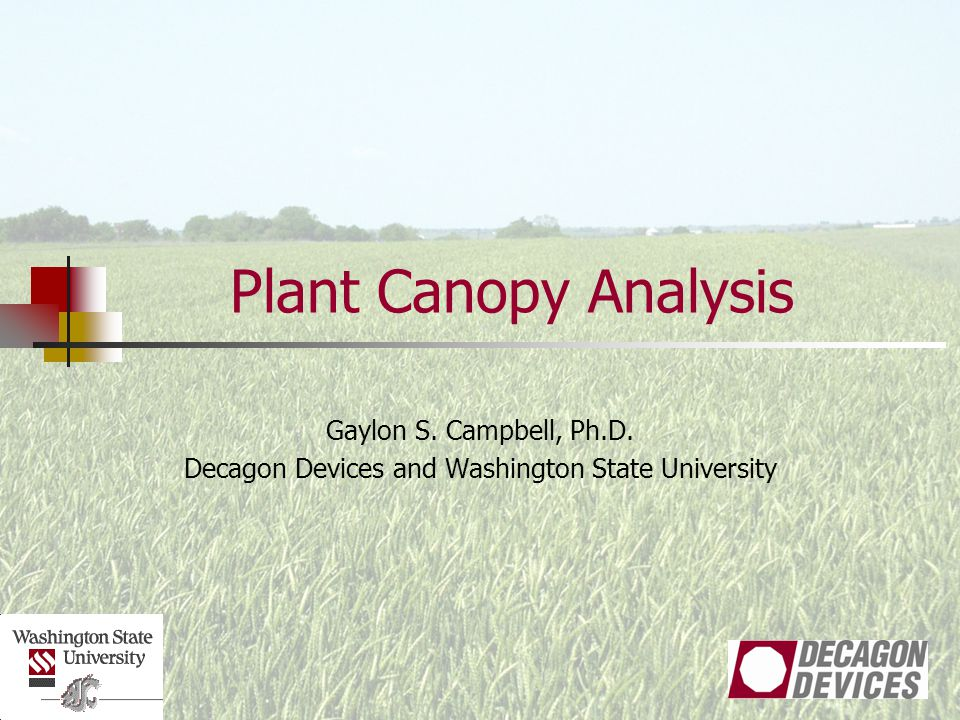 Plant Canopy Analysis Gaylon S. Campbell, Ph.D. Decagon Devices and Washington State University