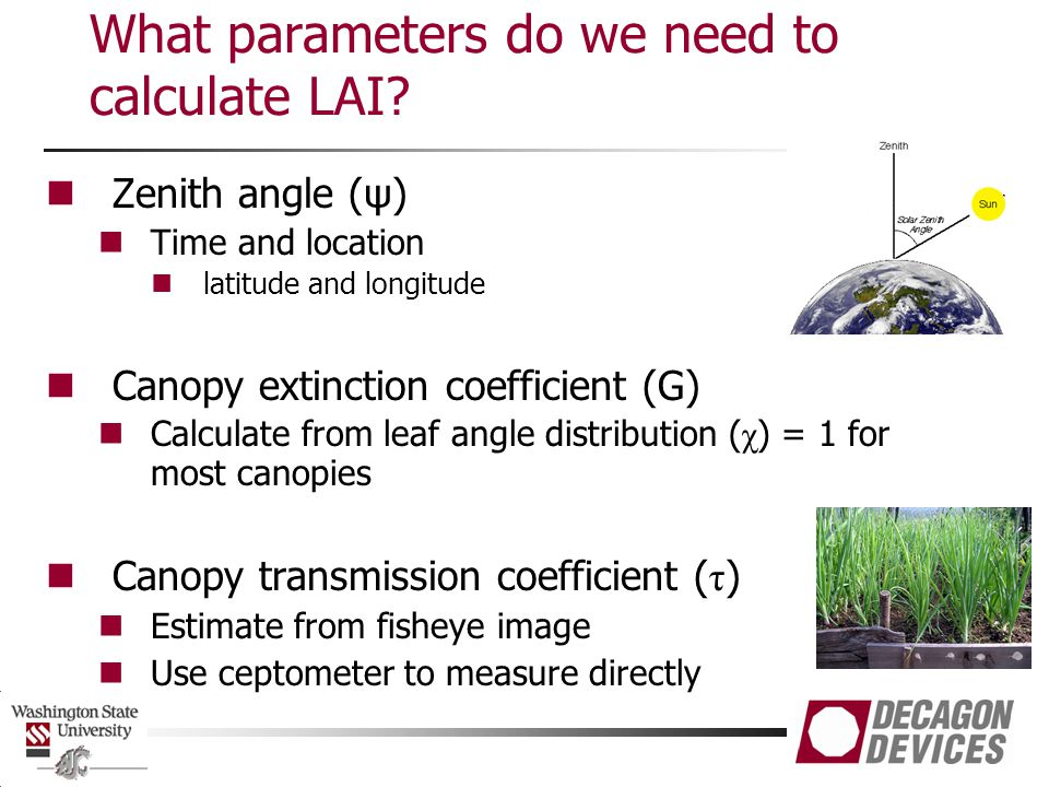 What parameters do we need to calculate LAI.
