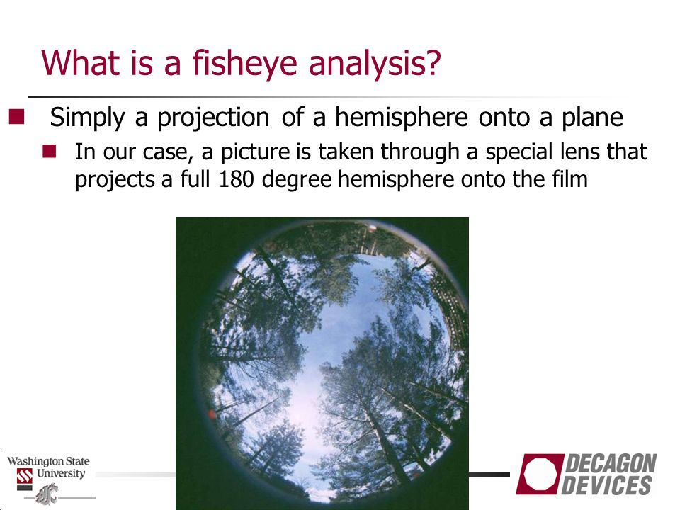 What is a fisheye analysis.