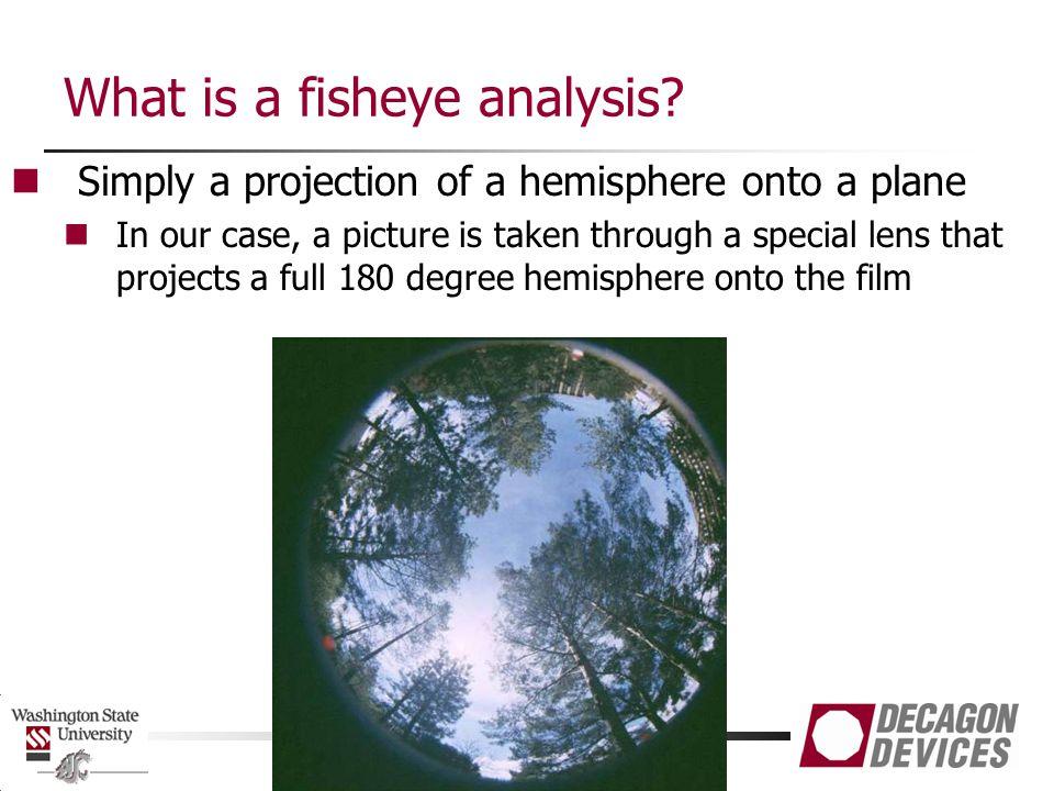 What is a fisheye analysis.