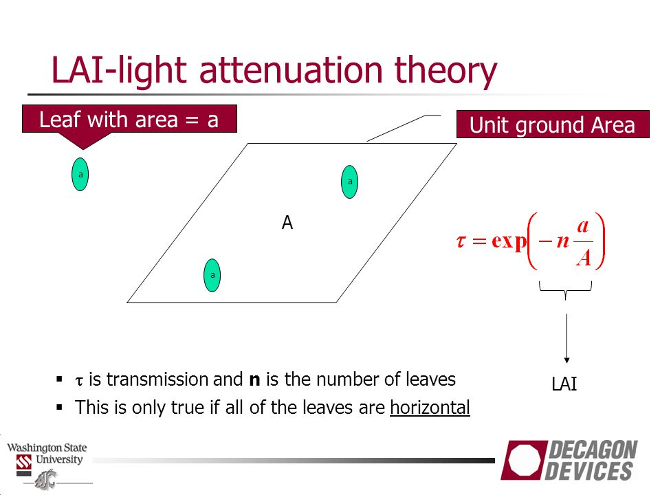 LAI-light attenuation theory A a a LAI   is transmission and n is the number of leaves  This is only true if all of the leaves are horizontal Unit ground Area a Leaf with area = a