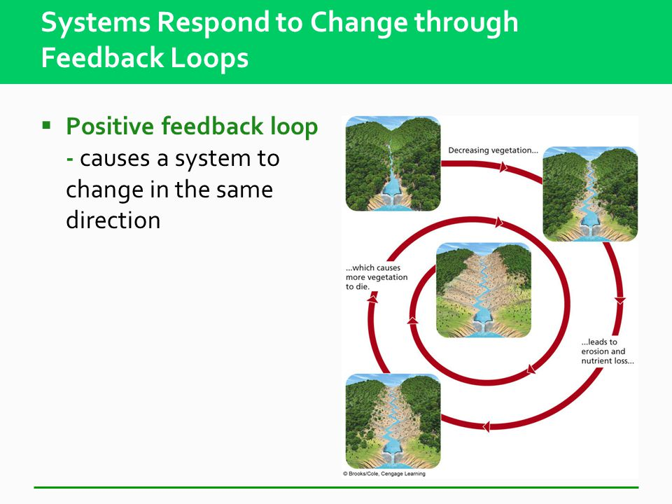 Systems Have Inputs, Flows, and Outputs  System – set of components that function and interact in some regular way Inputs from the environment Flows, throughputs Outputs