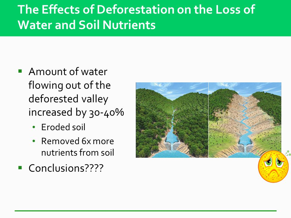 The Effects of Deforestation on the Loss of Water and Soil Nutrients  Investigators cut down all trees and shrubs in one valley  Sprayed area with herbicides to prevent regrowth