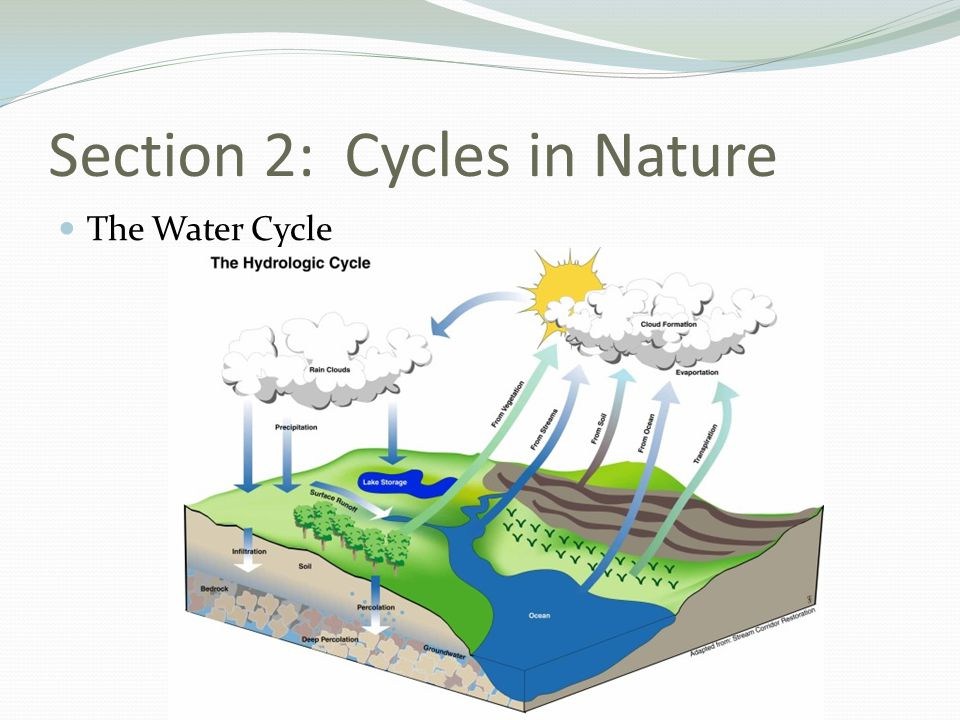 Section 2: Cycles in Nature The Water Cycle