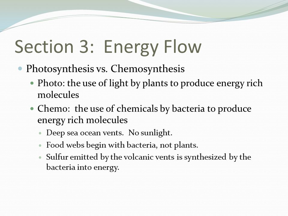 Section 3: Energy Flow Photosynthesis vs.