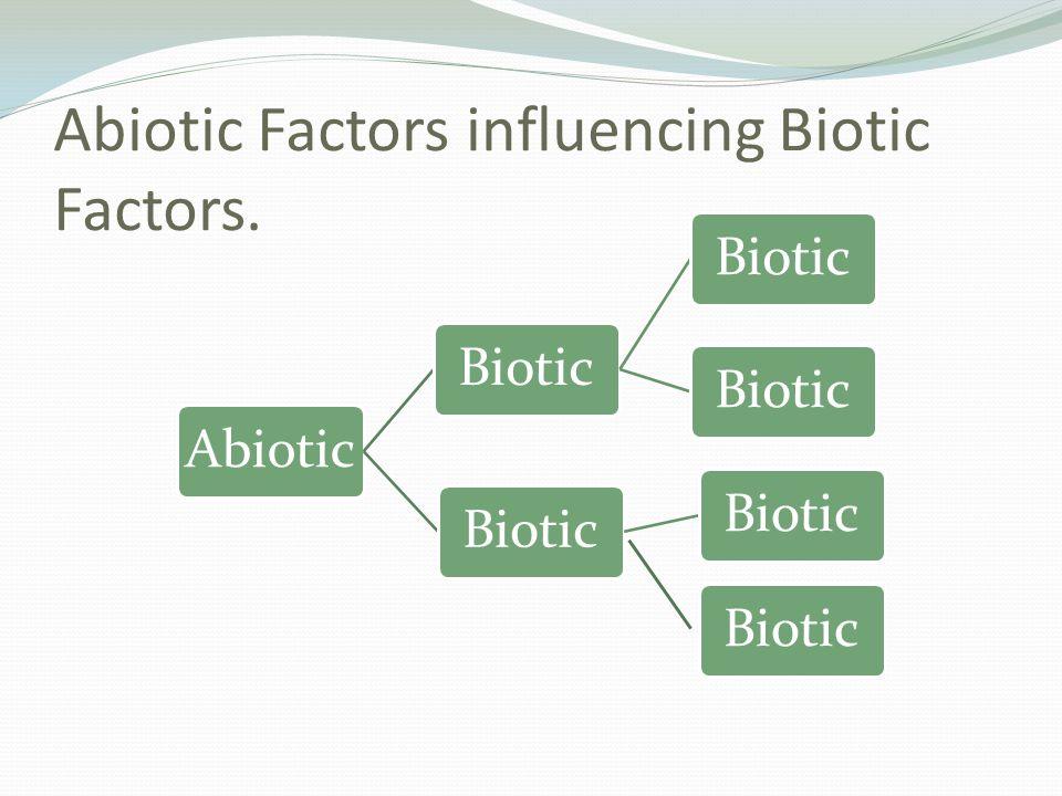Abiotic Factors influencing Biotic Factors. AbioticBiotic