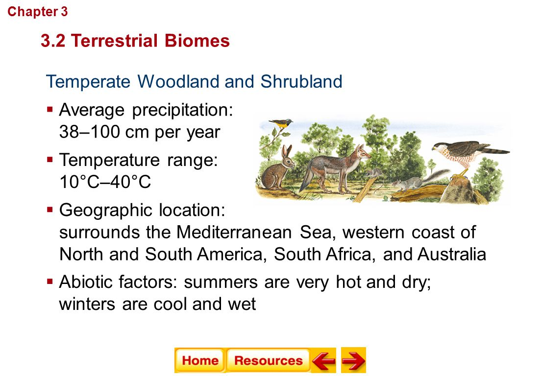 Communities, Biomes, and Ecosystems Temperate Woodland and Shrubland  Average precipitation: 38–100 cm per year  Temperature range: 10°C–40°C  Abio