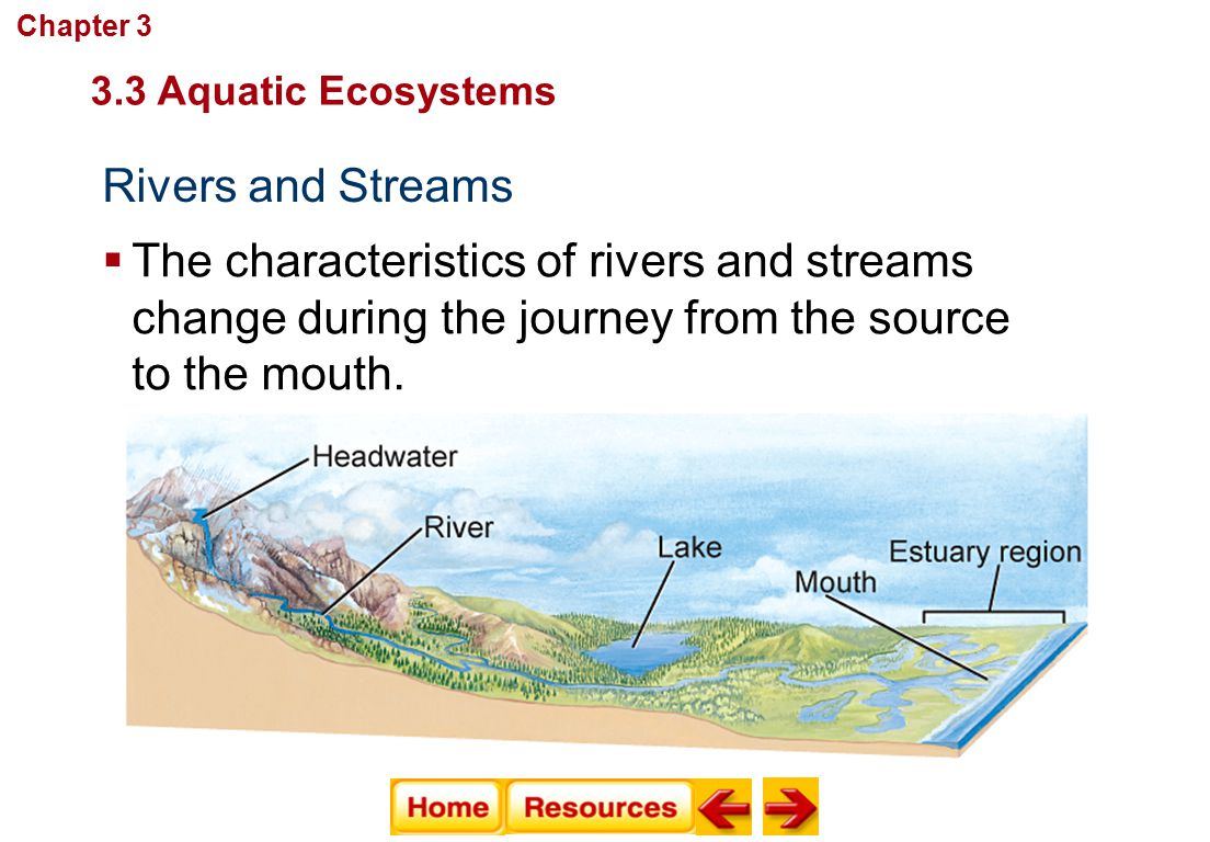 Rivers and Streams Communities, Biomes, and Ecosystems  The characteristics of rivers and streams change during the journey from the source to the mo