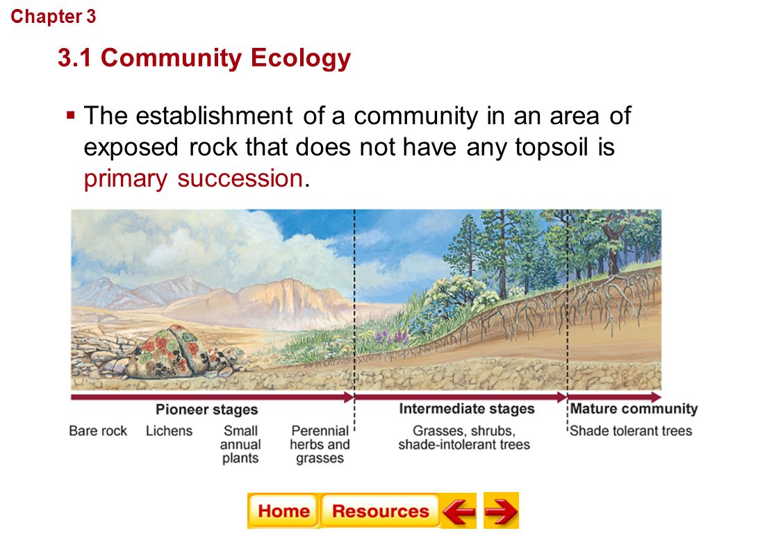 Communities, Biomes, and Ecosystems Tropical Savanna  Average precipitation: 50–130 cm per year  Temperature range: 20°C–30°C  Geographic location: Africa, South America, and Australia  Abiotic factors: summers are hot and rainy; winters are cool and dry 3.2 Terrestrial Biomes Chapter 3