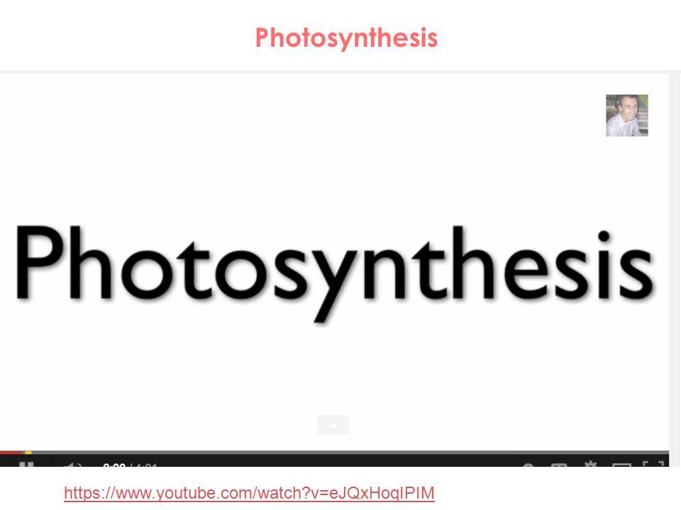 https://www.youtube.com/watch?v=eJQxHoqIPIM Photosynthesis