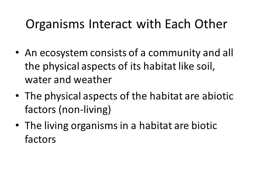Organisms Interact with Each Other An ecosystem consists of a community and all the physical aspects of its habitat like soil, water and weather The physical aspects of the habitat are abiotic factors (non-living) The living organisms in a habitat are biotic factors