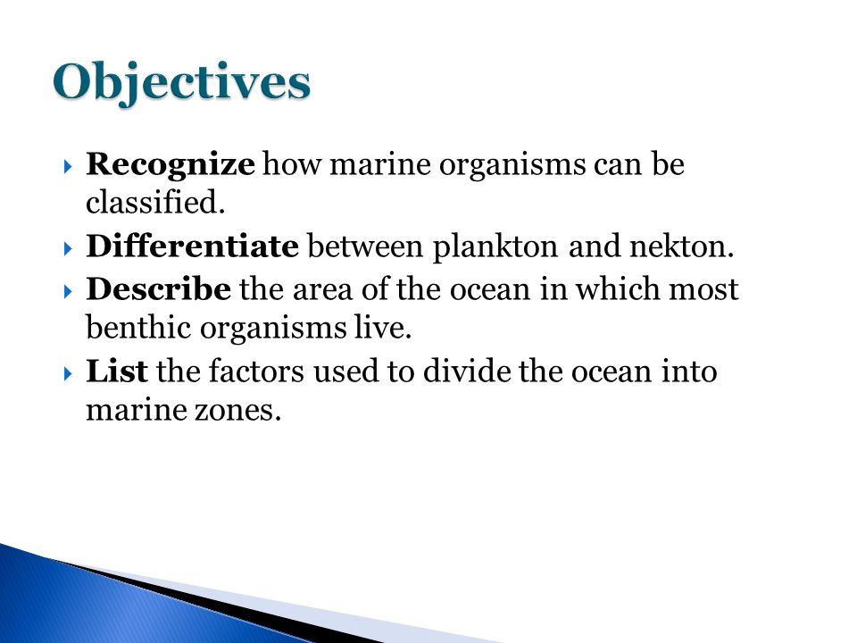  Recognize how marine organisms can be classified.