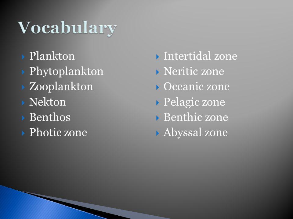  Plankton  Phytoplankton  Zooplankton  Nekton  Benthos  Photic zone  Intertidal zone  Neritic zone  Oceanic zone  Pelagic zone  Benthic zone  Abyssal zone