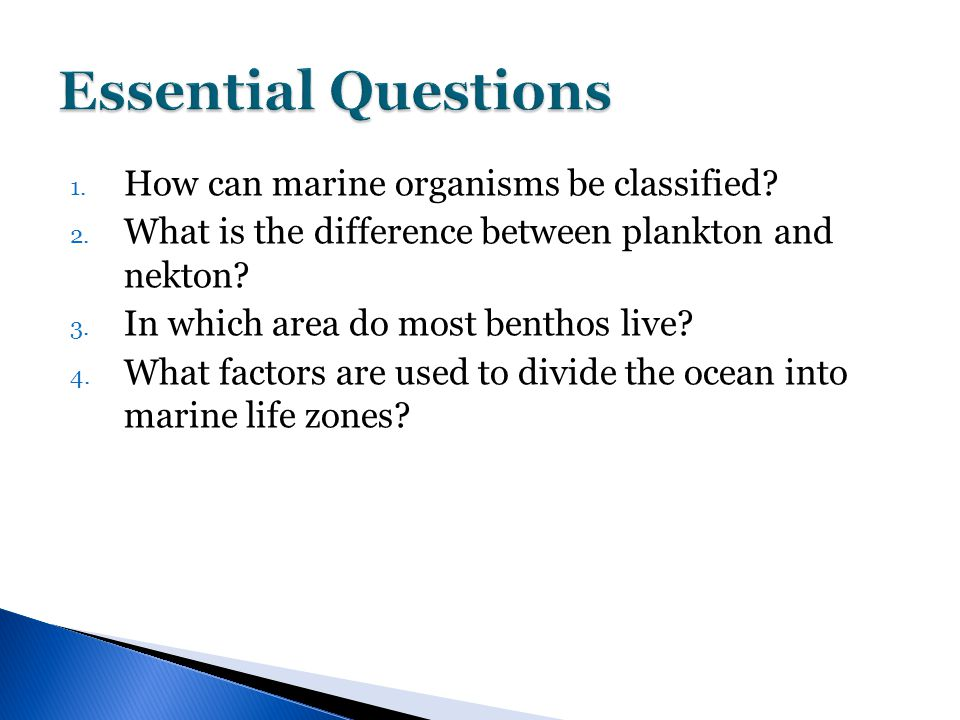 1. How can marine organisms be classified? 2. What is the difference between plankton and nekton? 3. In which area do most benthos live? 4. What facto