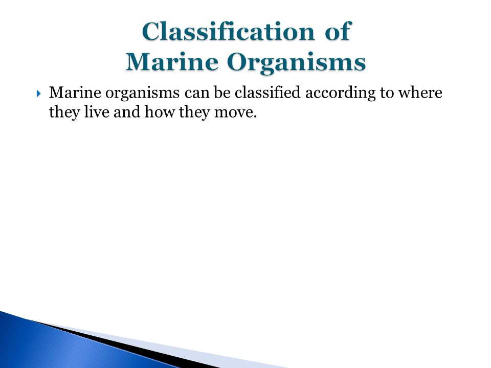  Marine organisms can be classified according to where they live and how they move.