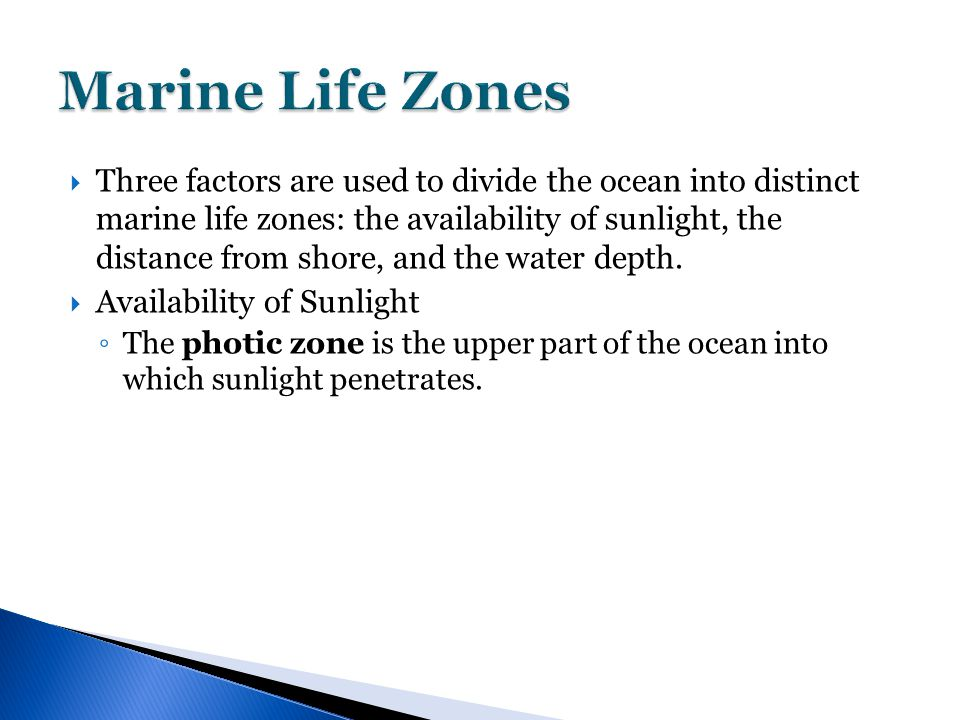  Three factors are used to divide the ocean into distinct marine life zones: the availability of sunlight, the distance from shore, and the water depth.