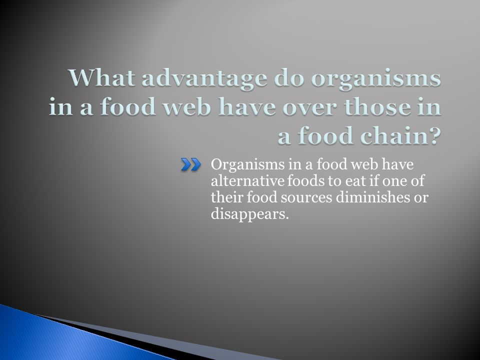 Organisms in a food web have alternative foods to eat if one of their food sources diminishes or disappears.