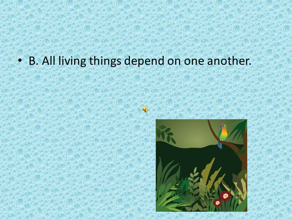 Which was an important theme from the selections? A. Kapok trees grow in the rain forest. B. All living things depend on one another.