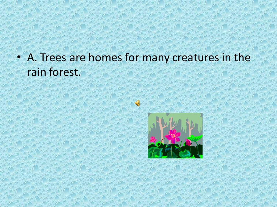 Which generalization is based on information in this selection. A. Trees are homes for many creatures in the rain forest. B. Wild animals and children